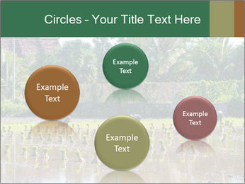 0000096741 PowerPoint Template - Slide 77