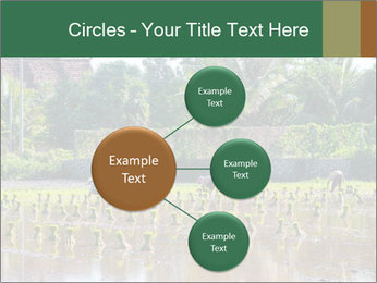 0000096741 PowerPoint Template - Slide 79