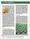 0000096741 Word Template - Page 3