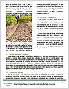 0000096741 Word Template - Page 4