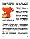 0000096743 Word Template - Page 4