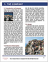 0000096746 Word Template - Page 3
