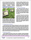 0000096747 Word Template - Page 4