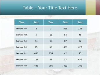 0000096751 PowerPoint Template - Slide 55