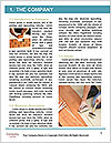 0000096751 Word Template - Page 3