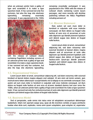 0000096751 Word Template - Page 4