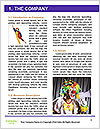0000096754 Word Template - Page 3