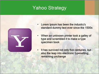 0000096755 PowerPoint Template - Slide 11