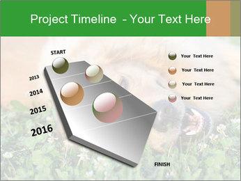 0000096755 PowerPoint Template - Slide 26
