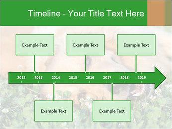 0000096755 PowerPoint Template - Slide 28