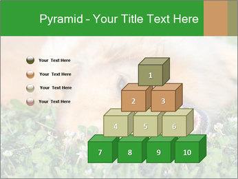 0000096755 PowerPoint Template - Slide 31