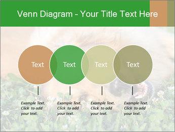 0000096755 PowerPoint Template - Slide 32