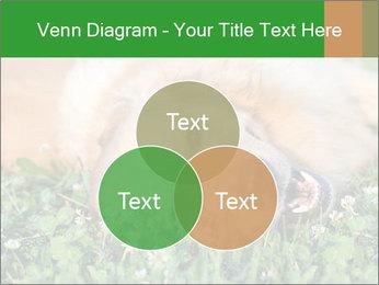 0000096755 PowerPoint Template - Slide 33