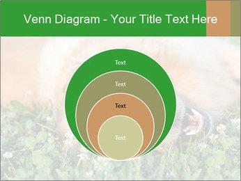 0000096755 PowerPoint Template - Slide 34