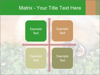 0000096755 PowerPoint Template - Slide 37