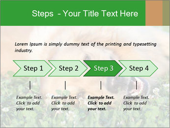 0000096755 PowerPoint Template - Slide 4