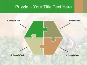 0000096755 PowerPoint Template - Slide 40