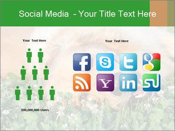 0000096755 PowerPoint Template - Slide 5