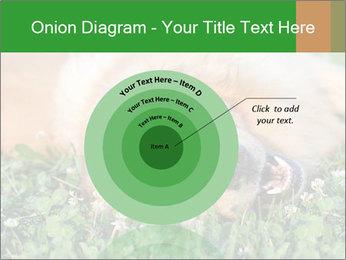 0000096755 PowerPoint Template - Slide 61