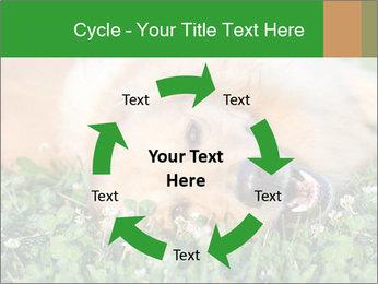 0000096755 PowerPoint Template - Slide 62
