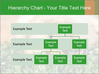 0000096755 PowerPoint Template - Slide 67