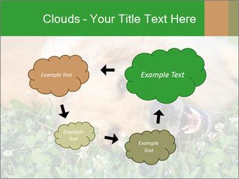 0000096755 PowerPoint Template - Slide 72