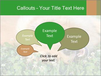 0000096755 PowerPoint Template - Slide 73