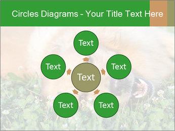 0000096755 PowerPoint Template - Slide 78