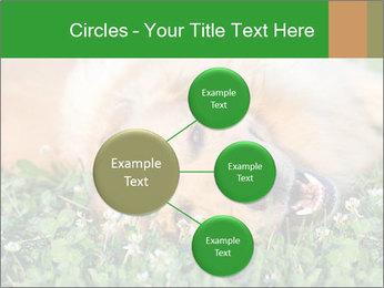 0000096755 PowerPoint Template - Slide 79