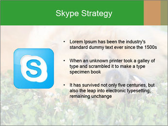 0000096755 PowerPoint Template - Slide 8