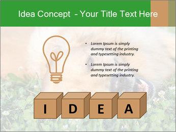 0000096755 PowerPoint Template - Slide 80