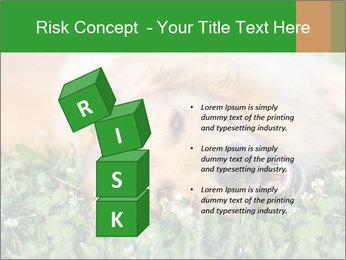 0000096755 PowerPoint Template - Slide 81