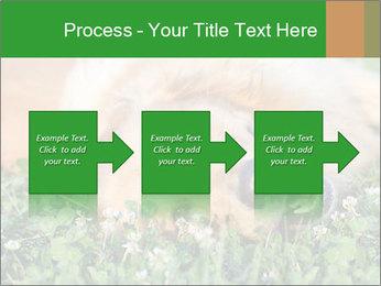 0000096755 PowerPoint Template - Slide 88