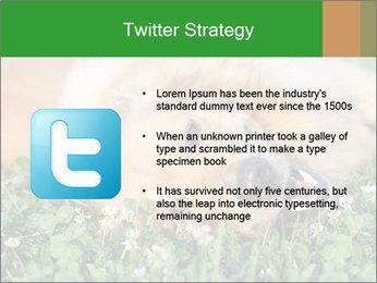 0000096755 PowerPoint Template - Slide 9