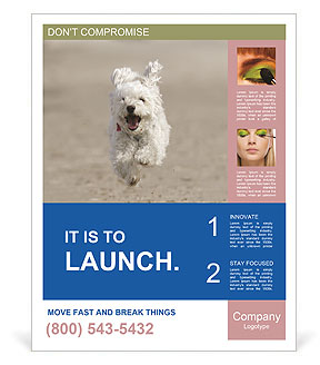 0000096757 Poster Template