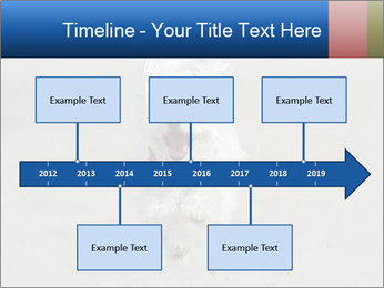 0000096757 PowerPoint Template - Slide 28