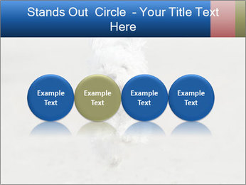 0000096757 PowerPoint Template - Slide 76