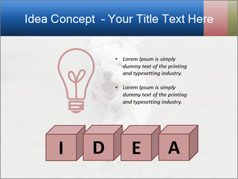 0000096757 PowerPoint Template - Slide 80