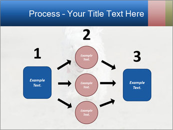 0000096757 PowerPoint Template - Slide 92