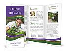 0000096900 Brochure Templates