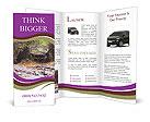 0000096967 Brochure Templates