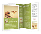 0000097337 Brochure Template