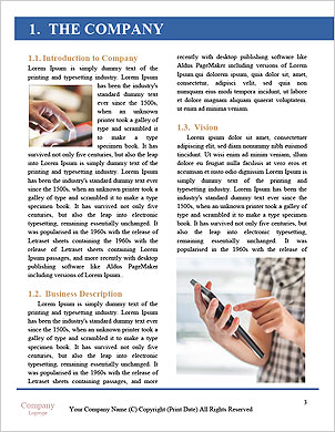 0000097636 Word Template - Page 3