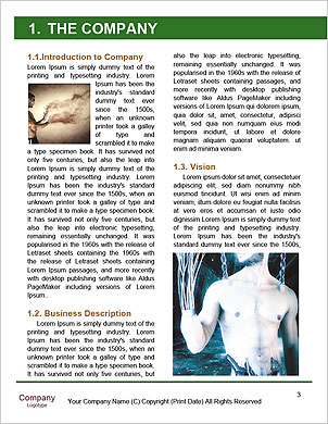 0000097708 Word Template - Page 3