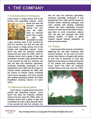 0000098036 Word Template - Page 3