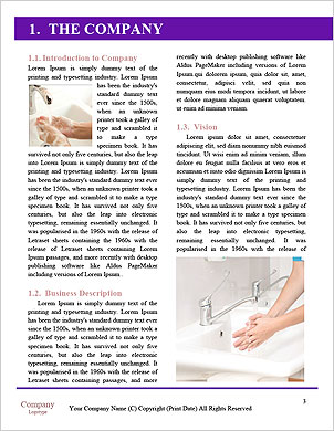0000098037 Word Template - Page 3