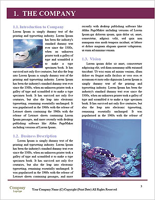 0000098046 Word Template - Page 3