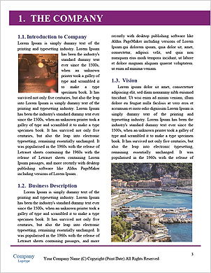 0000098052 Word Template - Page 3