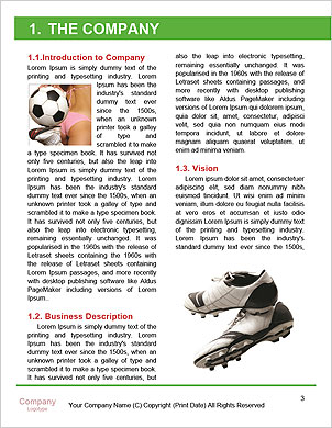 0000098073 Word Template - Page 3