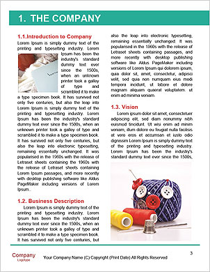 0000098091 Word Template - Page 3